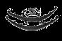 Custom Rear Springs With Greasable Kevlar Bushings and Xtreme Travel Shackles 73-87(91)